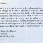 Veterinary Care Hospital, Colorado Springs, Polo Springs